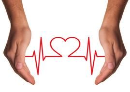heart care medical hands