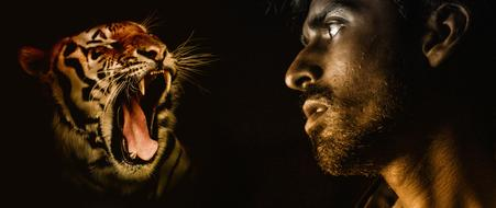 profile of a man and a predatory tiger