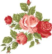 rose pink red romantic drawing