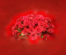 red background with bunch of roses