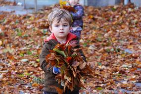 Child Playing Fall leaves