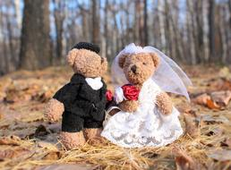 Just Married toys