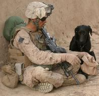 Soldier and Dog Companion