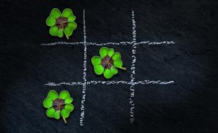klee four leaf clover