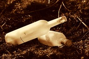 two empty bottles in dry grass