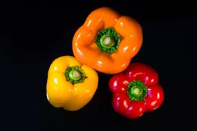 three multi-colored ripe peppers on a black background