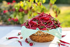 red chili peppers in a wicker basket