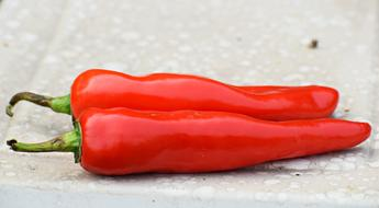two red peppers on a stone