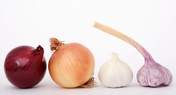two types of onions and garlic on a table