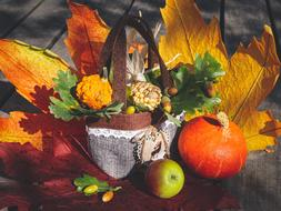 nice Autumn Decoration