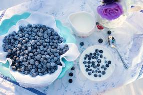 blueberries for a sweet breakfast