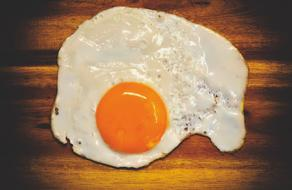 Fried Egg Protein