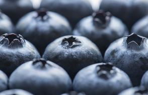 Antioxidant Background Berry