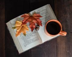 autumn leaves and a cup of coffee on a book