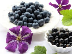 blueberries and black currants on plates