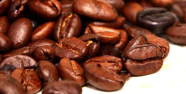 photo of coffee beans of chocolate color