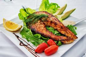 perfect Salmon Fish Grilled