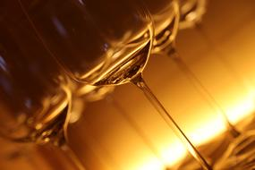 transparent illuminated wine glasses