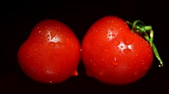 two wet tomatoes on a black background