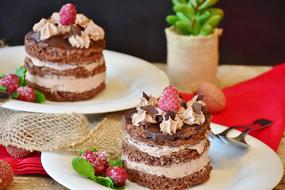 chocolate cakes with cream and decoration