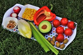 tray with healthy vegetables