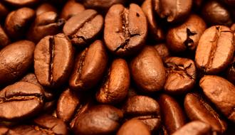 macro photo of roasted coffee beans under a lamp