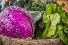 red Cabbage and green vegetables on Farmers Market