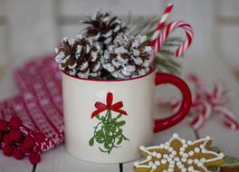 pine cones in christmas cup