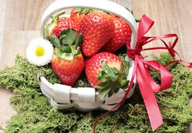 juicy Strawberries Basket