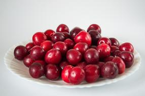red Plum Fruits Sweet