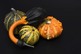 juicy Pumpkin Gourd decoration