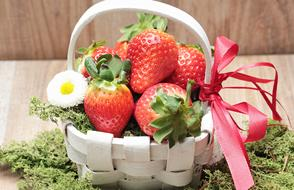 Strawberries Basket and Moss