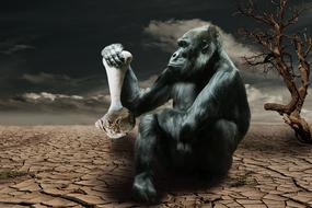 gorilla with bone in paw, hunger, collage