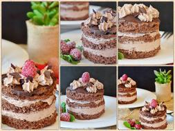 Chocolate Tarts Cream Cake