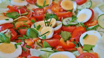 Salad with boiled eggs and Tomatoes