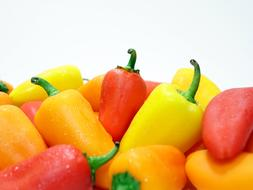 Pepper Yellow Red green
