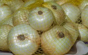 white Onions Net Vegetable