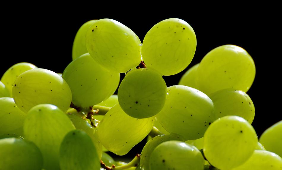 closeup photo of excellent Healthy green Grapes Fruits