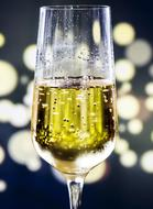 a glass of champagne on a background of festive lights