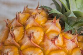 Pineapple Fruit macro