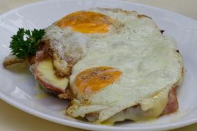 appetizing Fried Egg Bread