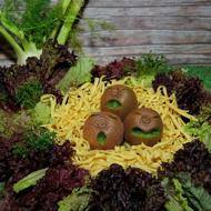 three kiwis shaped like chicks in a vegetable nest