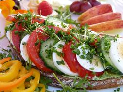 sandwich with vegetables and egg