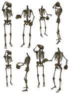 set of skeletons with skull in hand, drawing