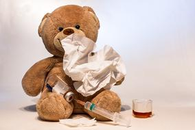 taddy bear flu vaccination