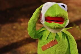 Injured Kermit frog, soft toy with bandage on head