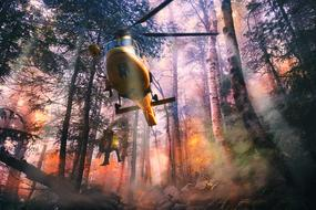 Helicopter Help forest
