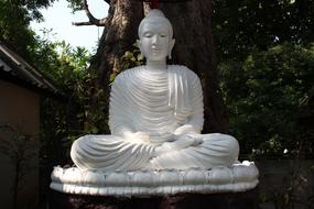 white sculpture of a sitting buddha