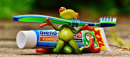 Toothpaste and ceramik Frog