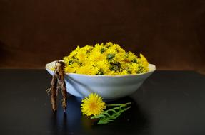 yellow dandelion buds on a white plate